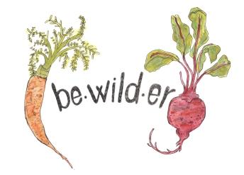 Bewilder logo1.jpeg